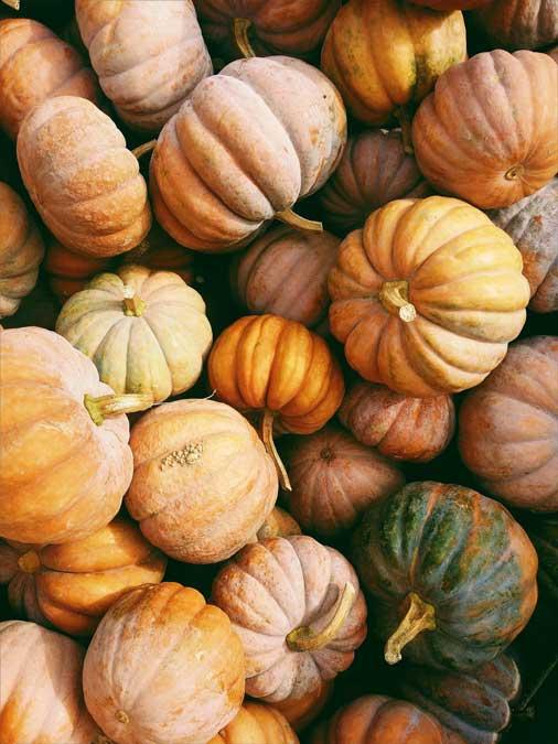 Hidden health benefits in pumpkin